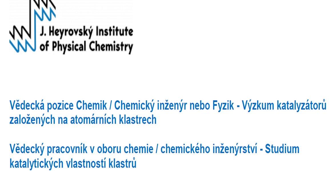 Pozice v Ústavu fyzikální chemie J. Heyrovského